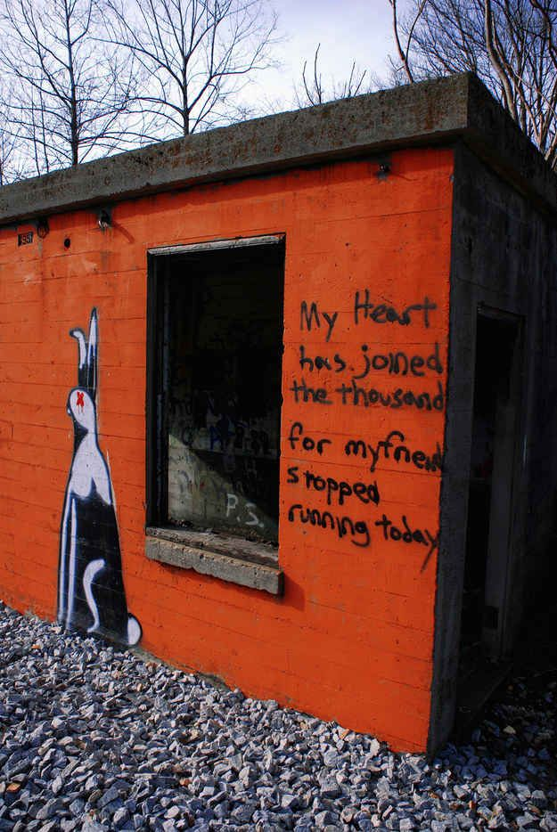 Watership Down – Richard Adams. Virginia, US. | 28 Brilliant Works Of Literary Graffiti