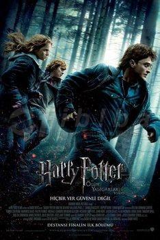 Harry Potter 7 Olum Yadigarlari Bolum 1 Filmi Deathly Hallows Film Harry Potter