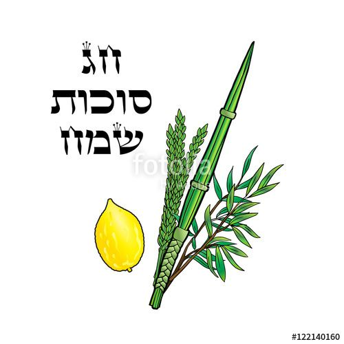 "Download the royalty-free photo ""Happy Sukkot background. Hebrew translate: Happy Sukkot Holiday. Jewish traditional four species for Jewish Sukkot festival. Vector illustration."" created by sofiartmedia at the lowest price on Fotolia.com. Browse our cheap image bank online to find the perfect stock photo for your marketing projects!"