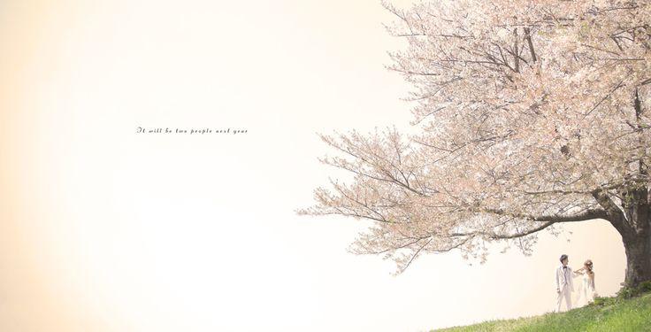 洋装ロケーションフォト | 結婚写真 和装前撮りフォトウエディングなら京都の写真館 スタジオTVB京都