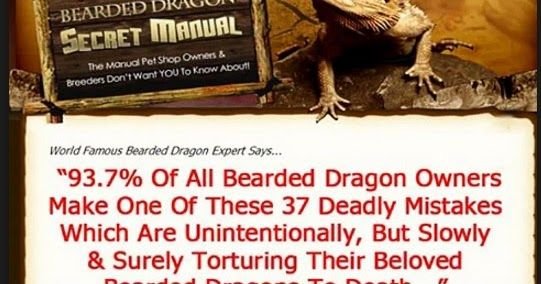 http://ift.tt/2eKD7OT ==>  Bearded Dragon Secret Manual Review| How To Care For Your Beloved Bearded Dragon Bearded Dragon  Bearded Dragon Secret Manual Review : http://ift.tt/2f754Rs What Is Bearded Dragon Secret Manual? Are you having some problems with your bearded dragon that is not eating at all not moving and shedding skin constantly burrowing away or more? Understand these problems why bearded dragon need special attention as well as care Chris Johnson has written Bearded Dragon…