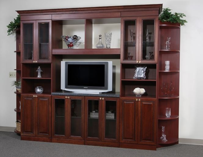 Built In Living Room Closets
