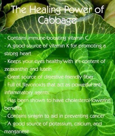 healing power of cabbage