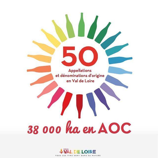 [Vin en chiffres] Les Vins du Val de Loire, ce sont 50 appellations et dénominations d'origine, 38 000 hectares en AOC. Combien de fois la ville de Paris ? #LoirePower #VinsValdeLoire  #vin #winelover #Loirelovers
