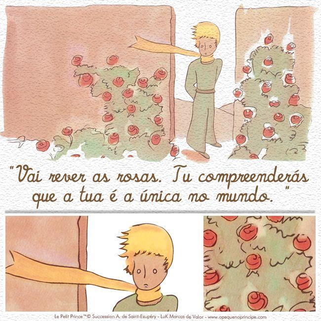 """""""Vai rever as rosas. Tu compreenderás que a tua é a única no mundo."""""""