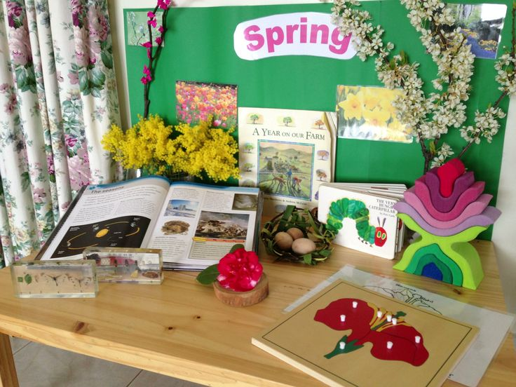 The Spring Discovery table I created to welcome Spring in 2013. Reference book about seasons,   A Year on Our Farm, The Very Hungry Caterpillar, branch cutting from plum tree, large sprig of Acacia flowers, a pretend Cherry Blossom branch (tissue paper glued to dead branch), a nest woven from natural materials from our back yard with 3 wooden eggs, Spiel and Holz Flower Puzzle, montessori flower peg puzzle, camelia flower on a tree cookie, 2 resin blocks containing butterfly and bee life…