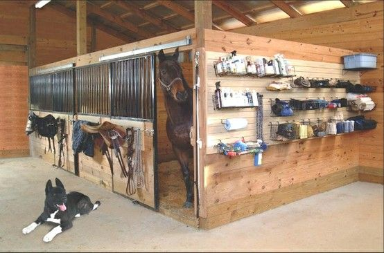 Great Wall Of Organization So Clean Equestrian