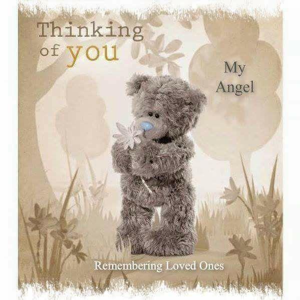 ●•‿✿⁀Taɬɬy Teddy‿✿⁀•● Thinking of you