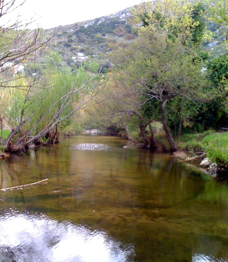 Greek Nature - River - Village Eggares on Naxos island - GREECE  www.villadelona.com
