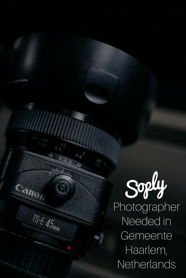 #Photographer needed for #headshots in Gemeente Haarlem, Netherlands. See the #photography job and apply by clicking the pin!
