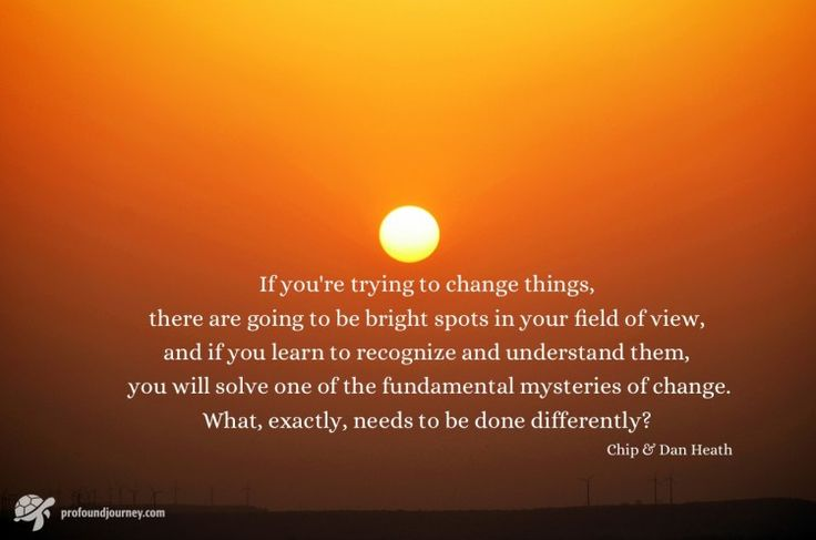 Chip and Dan Heath quote about the advantages of looking for bright spots when you are trying to make a personal change, rather than trying to find and fix problems.