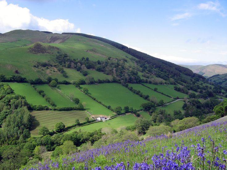 Dolgellau, north Wales (pic via http://sheepskinlife.com)
