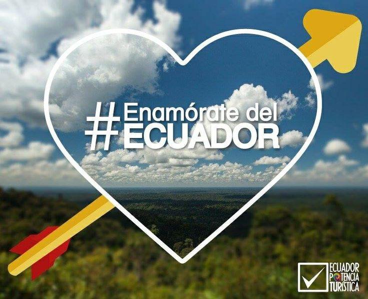 Need to write an essay on Ecuador?