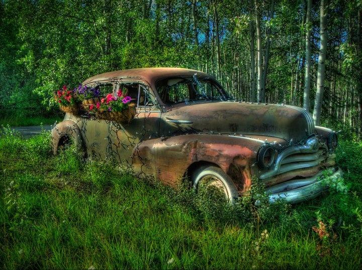 Old car on Takhini River Road - Tim Falkenberg