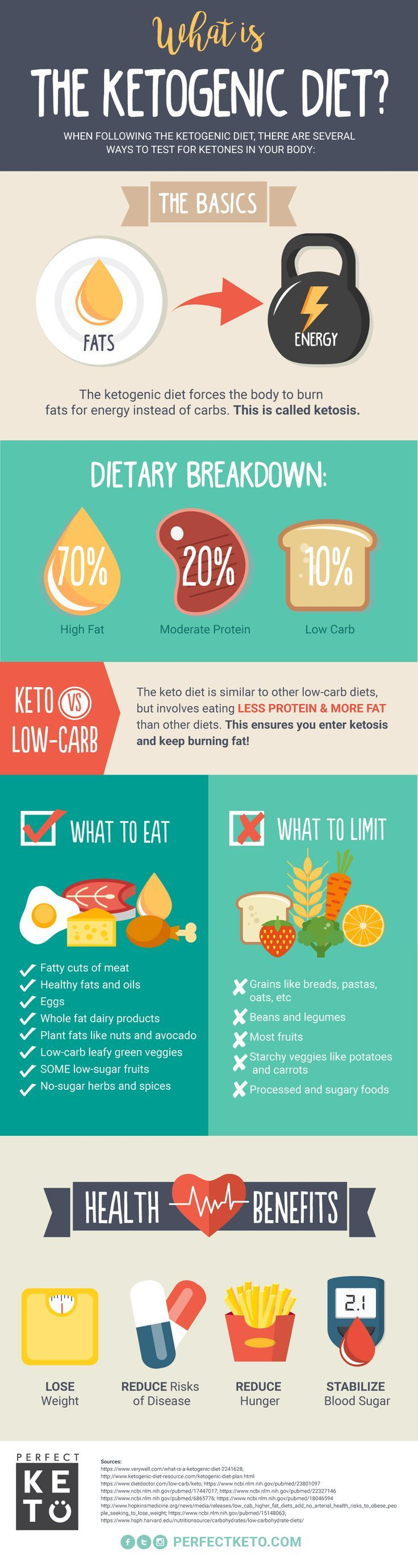 What is the Ketogenic Diet and how does it stand out from other kinds of low-car...