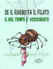 Image result for proverbi italiani