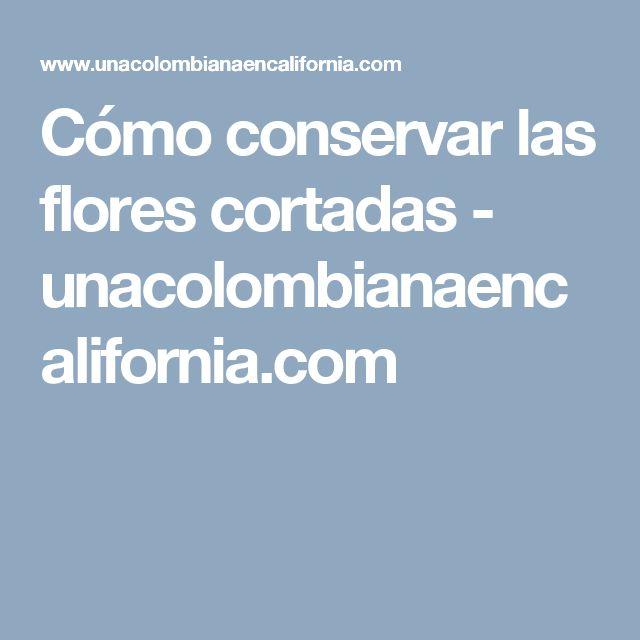 Cómo conservar las flores cortadas - unacolombianaencalifornia.com