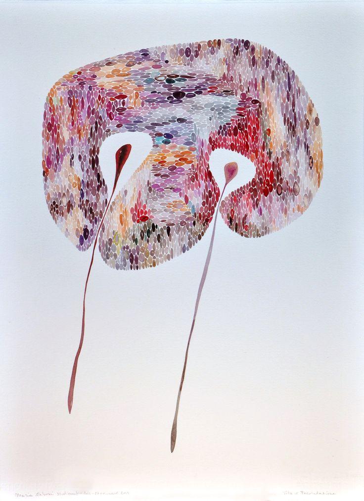 Vita o Fecondazione cm 56 x 76 Tecnica acquerello Anno 2013