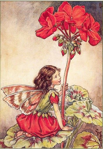 Cicely Mary Barker. I am deathly allergic to Geraniums, but man are they pretty!