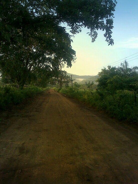 Caminando el sendero