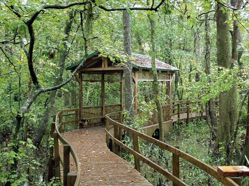 Shangri La Botanical Gardens In Orange Texas Favorite Places Spaces Pinterest Gardens