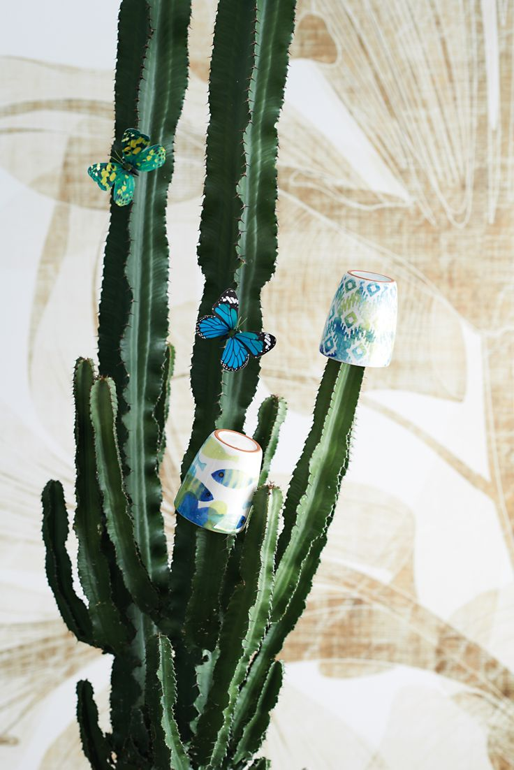 Cups Blue Fish and Ikat by Pfister, Summer Paradise, Indoor Ideas, Furnishing and Decoration Ideas, Decoration, Butterflies, Cactus