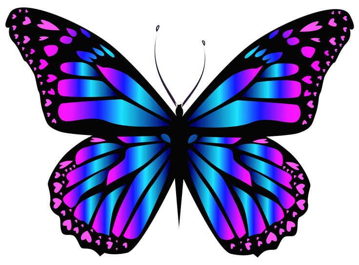Blue and Purple Butterfly PNG Clipar Image