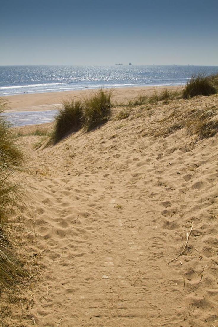 Balmedie Beach, Aberdeenshire, Scotland