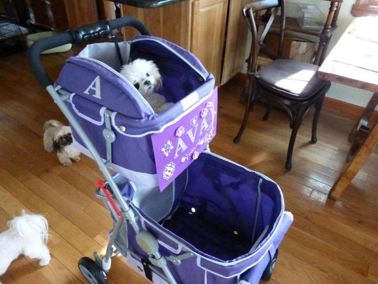 14 Best Dog Strollers Images On Pinterest Baby Strollers