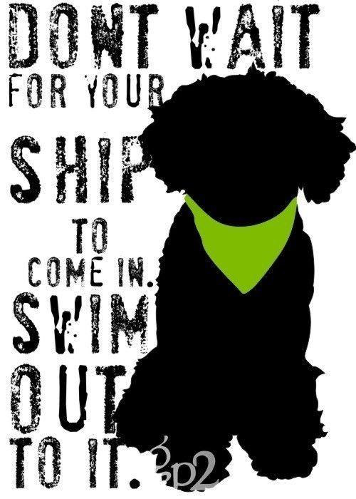 Portuguese Water Dog Art Print Wall Decor Inspirational Series. $14.00, via Etsy.