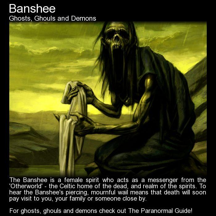 Banshee. Have you heard the banshee's keening wail? http://www.theparanormalguide.com/blog/banshee1