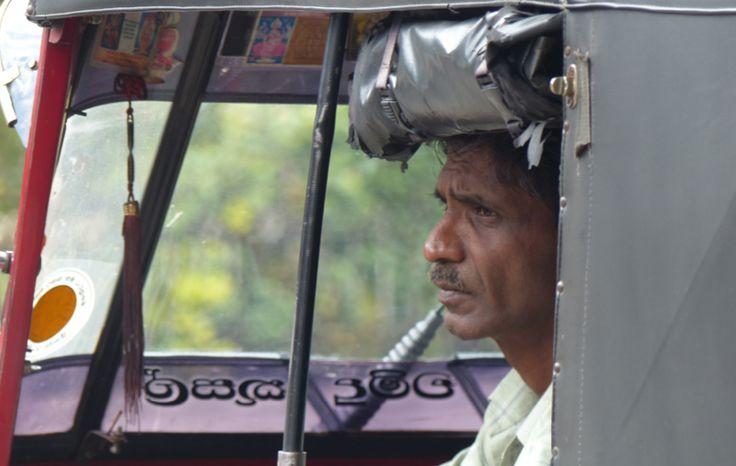 Quand partir et que savoir avant un voyage au Sri Lanka en famille (2/2) - VOYAGE FAMILY