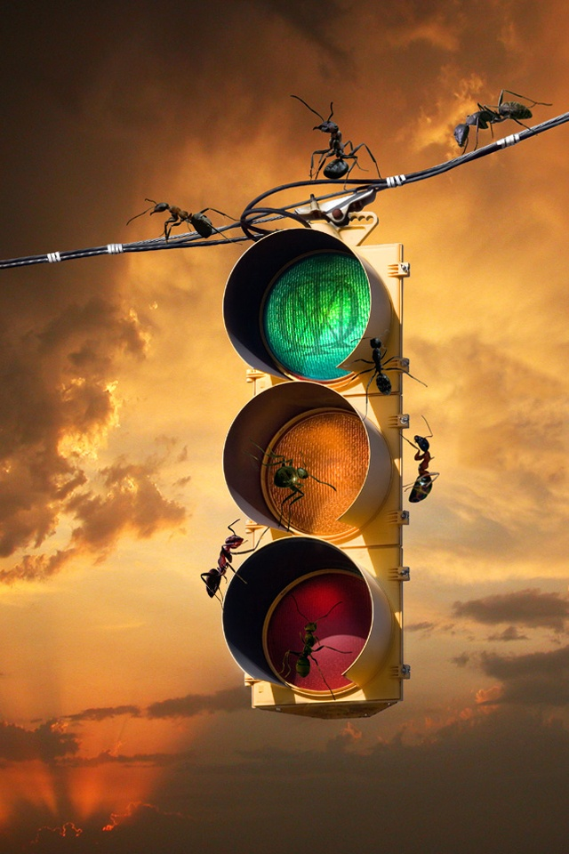81 Best TRAFFIC LIGHTS / SIGNS Images On Pinterest