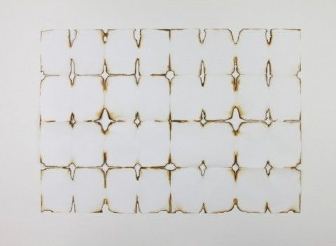 RA Summer Exhibition 2015 work 1009 :RED HOT POKER DRAWING by Cornelia Parker RA, £10800.