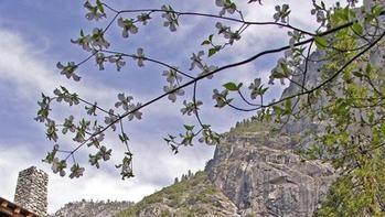 Ahwahnee, Yosemite National Park