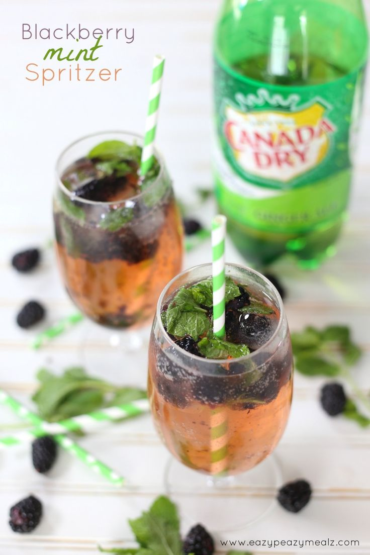 Refreshing, simple, elegant, non-alcoholic beverage perfect for a garden party. Blackberry Mint Spritzer #ad #KeepSpringBubbly - Eazy Peazy Mealz