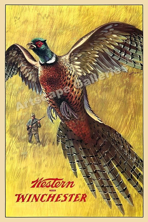 Winchester Vintage Style Quail Hunting Poster - 16x24 #Vintage