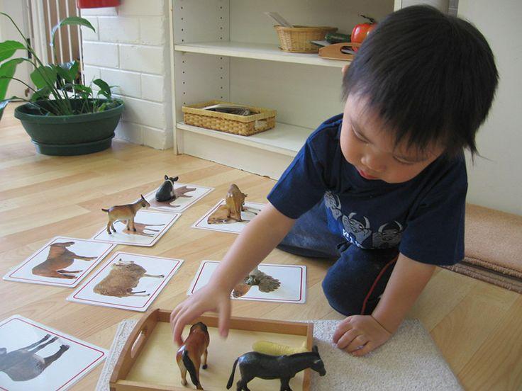 68 Best Montessori Toddler Community 18 24 Months Images