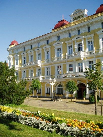 The Savoy Complex is located in the very centre of the town in the close vicinity of a large park and the popular Sadová Café. The Hotel offers 9 apartments, 50 single and 33 double rooms with satellite TV (including Spa Channel), refrigerator and telephone. The therapeutic procedures taking place in the basement can be accessed by lift.