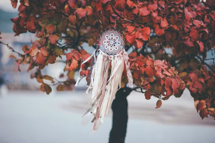Boho dreamcatcher on the red tree - our favorite shot by Anna Pavlova