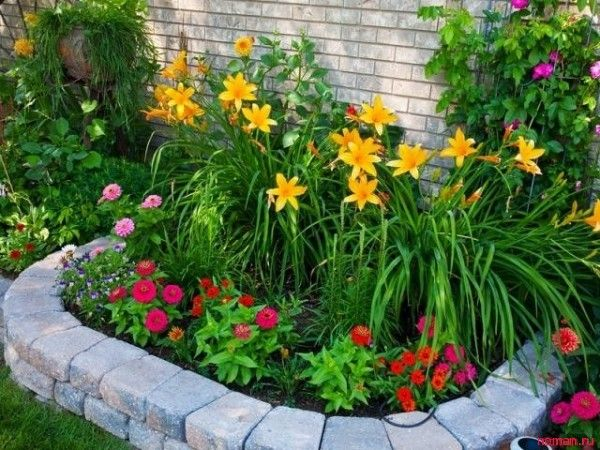 daylilies and zinnias