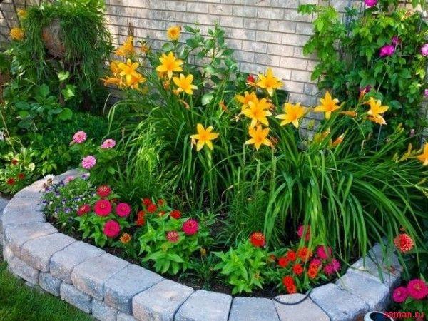 56 best grass images on pinterest ornamental grasses for Grasses for flower beds
