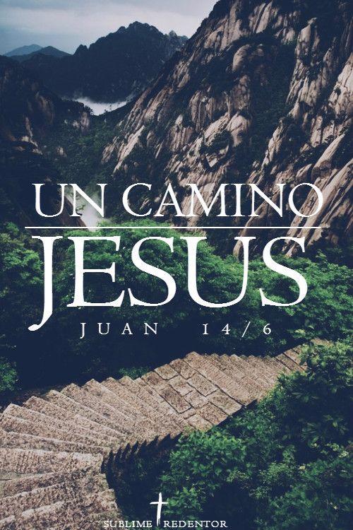 Jesús le contestó:—Yo soy el camino, la verdad y la vida; nadie puede ir al Padre si no es por medio de mí. Juan 14:6