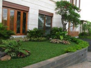 taman minimalis depan rumah type 45