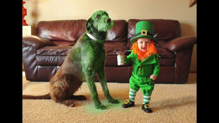 Pin for Later: These Photos of a Real-Life Baby Leprechaun Will Make Everyone Wish They Were Irish