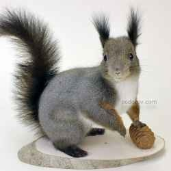 making stuffed animals, trophies, very rare profession, which is passed on from generation to generation, it joined many specialties. now taxidermy...