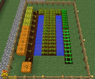 farming in minecraft