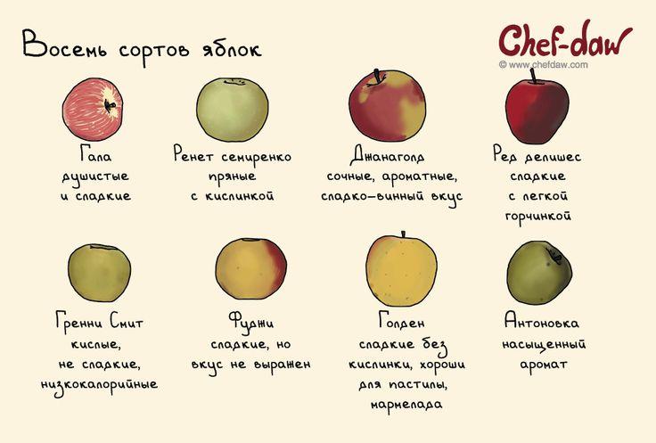 chefdaw - Восемь сортов яблок