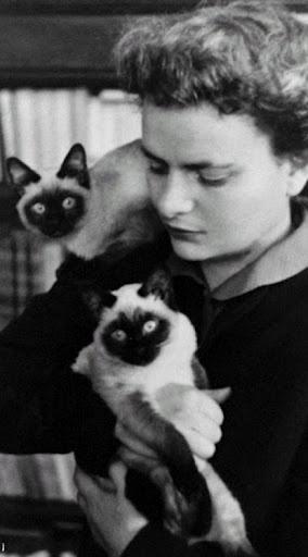 Elsa Morante con due gatti siamesi