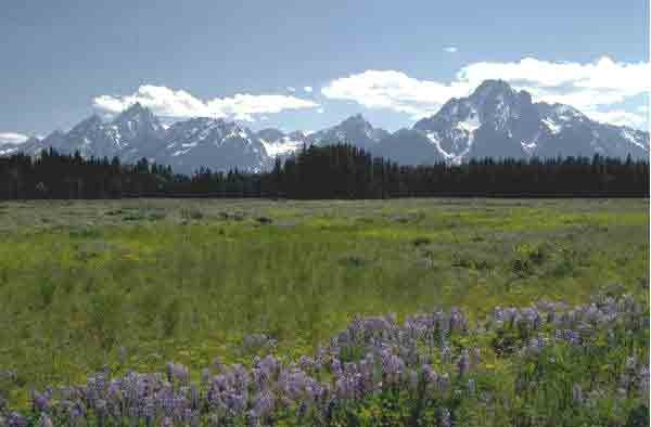 Montana MountainsGod Create, Favorite Places, Breath Spaces, Wrap Around Porches, Montana Mountain, Liz Lemon, Wanna Travel, Travel Lists, Wraps Around Porches